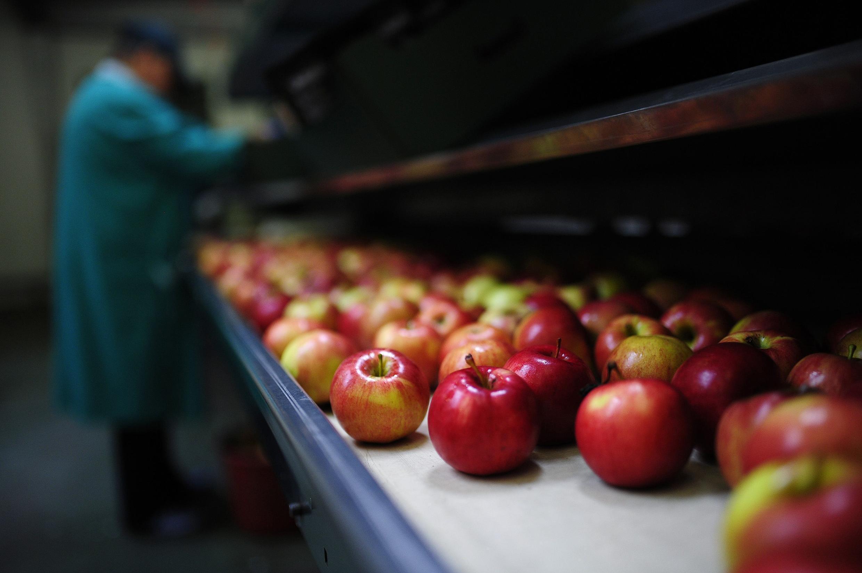 «Больше растительной еды», «меньше аллергенов», «больше внимания к окружающей среде при производстве» — эти и другие требования со стороны потребителей серьезным образом влияют на деятельность предприятий