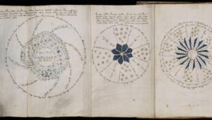 Páginas do manuscrito Voynich