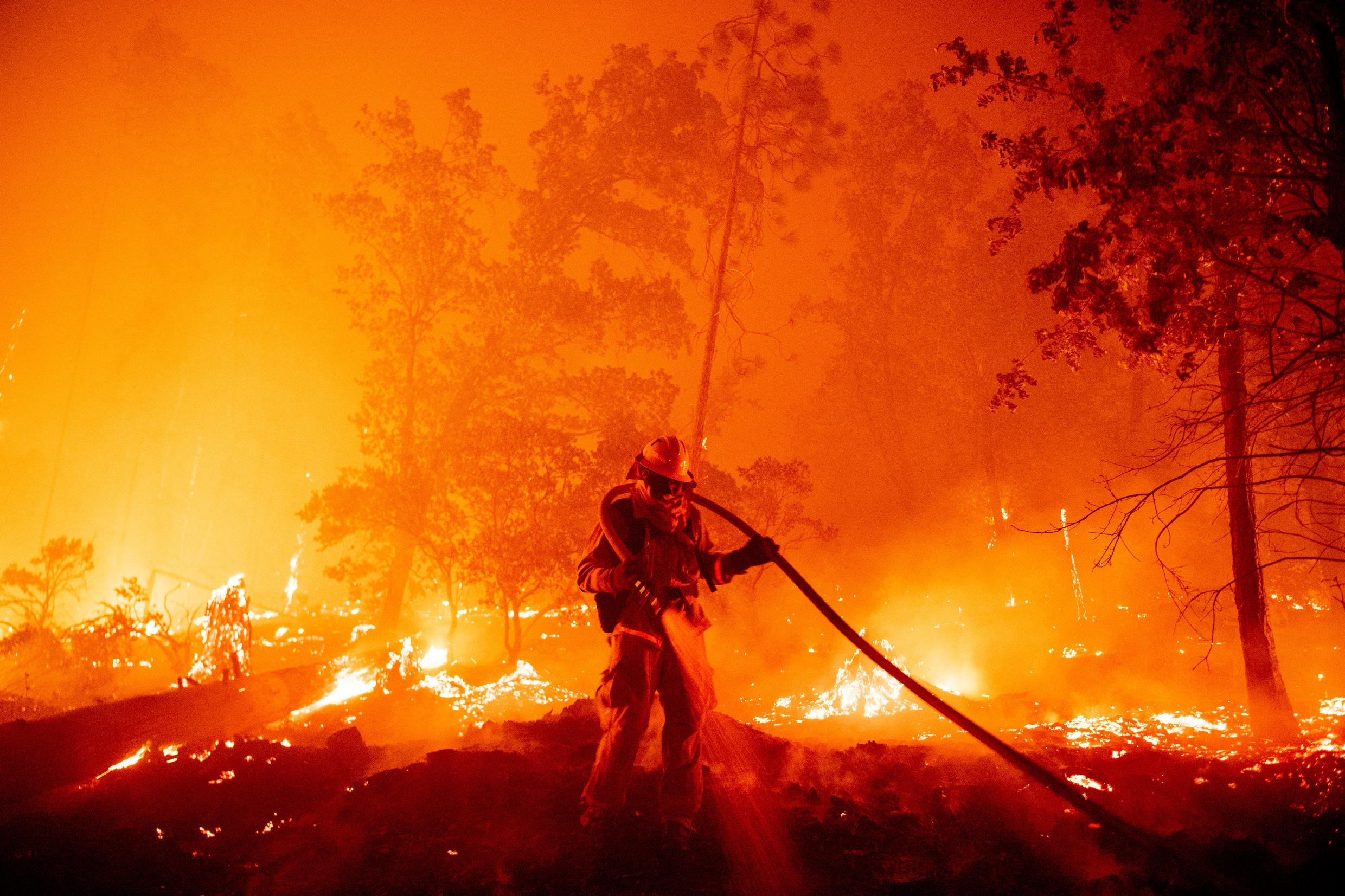 Massive wildfires that devastated vast areas in Australia, Siberia, the US West Coast and South America in 2020 have been tied to climate change