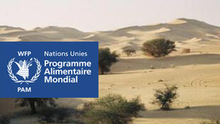 A seca é uma das causas da penúria alimentar no Niger, um dos países do Sahel apoiado pelo PAM.