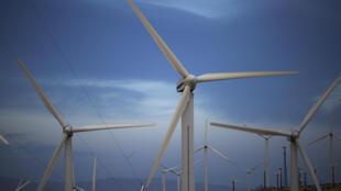 Turbinas eólicas generadoras de energía eléctrica en un parque eólico en el área de San Gorgonio Pass en Palm Springs, California.