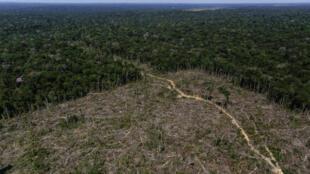 Les associations accusent le nouveau code de favoriser la déforestation. Depuis son entrée en vigueur, la déforestation a augmente de plus de 30% entre 2015 et 2016. Ici, une vue d'une parcelle amazonienne déboisée.
