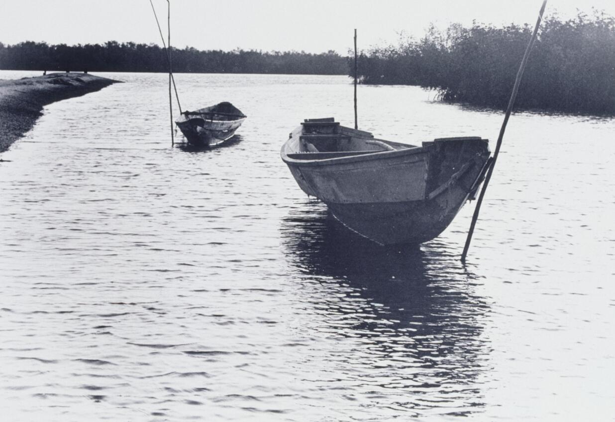 Du fleuve Sénégal à Kounou : même schéma, même description.