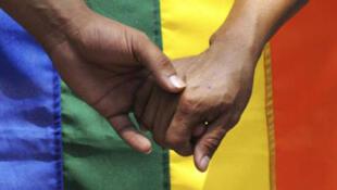 Los diputados adoptaron este 12 de febrero el proyecto de ley sobre el matrimonio homosexual.