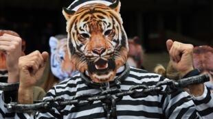 Pour protester contre l'utilisation d'animaux dans les cirques, des manifestants portent des masques de bêtes et des vêtements de prisonniers, à Strasbourg, le 12 avril 2018.