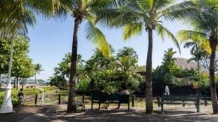 La Polynésie française a réussi à contenir la pandémie de coronavirus et éviter tout décès. Ici, les Jardins de Paofai, à Papeete le 1er Mai 2020 (photo d'illustration).