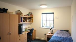 En Francia, el organismo que gestiona la vivienda estudiantil se denomina CROUS.