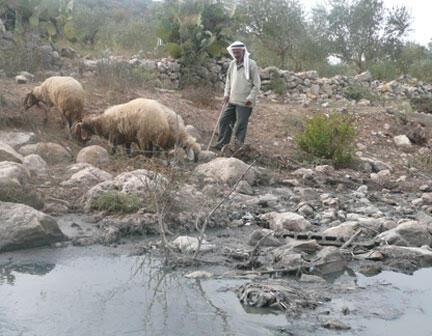 Tại Jordanie, đối với nhiều người, nước là tài sản chung và không phải trả tiền (Ảnh minh họa)