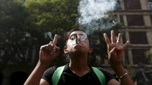 Les partisans de la légalisation avancent qu'une dépénalisation de la marijuana ferait chuter les revenus des cartels de drogue et réduirait la violence au Mexique.
