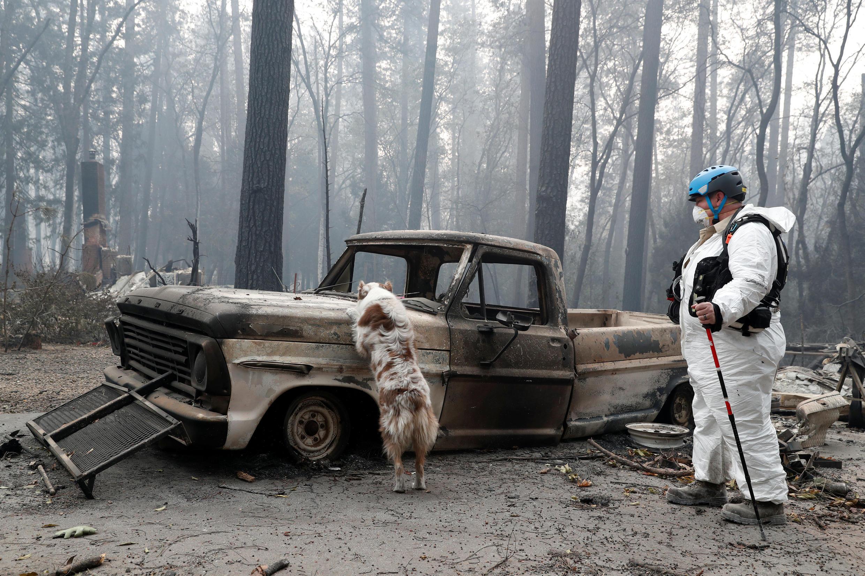 Equipes de socorro continuam em busca de sobreviventes nas regiões atingidas pelo fogo