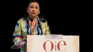 A ministra Kátia Abreu (Agricultura, Pecuária e Abastecimento), em Paris, durante discurso na OIE.