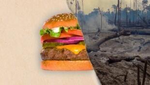 """Imagem que ilustra o relatório """"Os segredos por trás do Burger King e da produção mundial de carne"""", da Mighty Earth em parceria com a Rainforest Foundation da Noruega."""