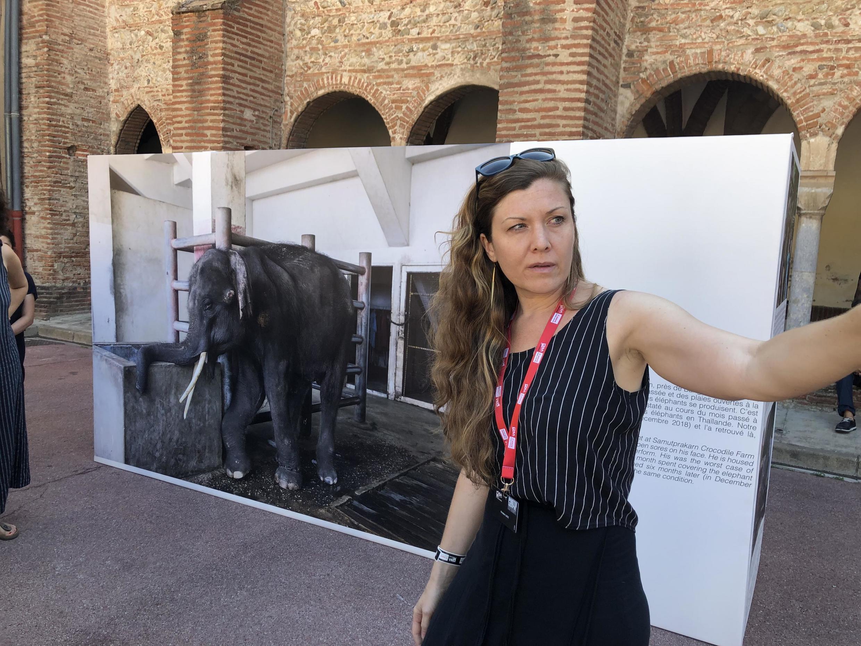 """A fotógrafa americana Kirsten Luce durante visita guiada aos visitantes da exposição """"A face oculta do turismo da fauna""""."""
