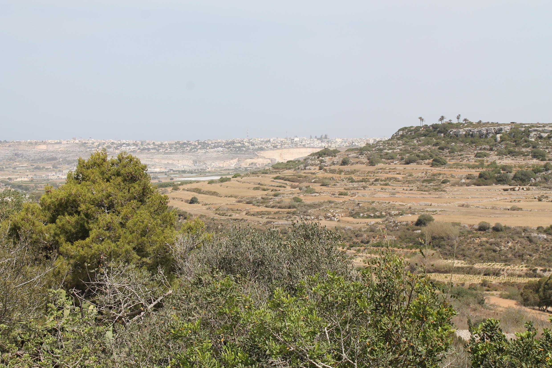 Un climat méditerranéen aride où les chutes de pluie sont très irrégulières.