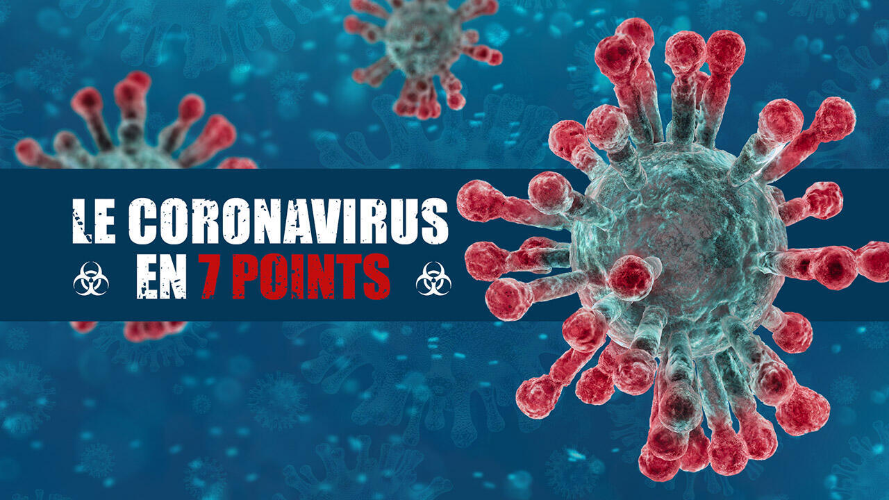 存檔圖片:新型冠狀病毒  Image d'archive: Le coronavirus