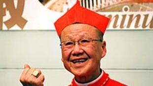 资料图片:已经卸任的荣休主教汤汉枢机再次被罗马教廷任命为香港教区宗座署理,
