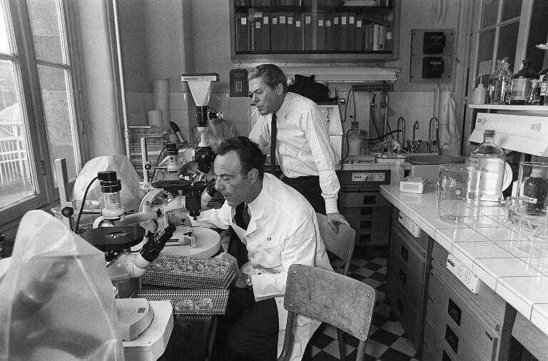 Jacques Monod (droite) et François Jacob (gauche) dans leur laboratoire de l'Institut Pasteur (Paris), le 24 février 1971.