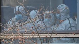 世界衛生組織專家武漢溯源調查 資料照片