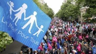 Противники однополых браков 26 мая 2013