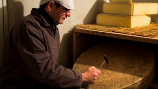 Cheese-maker Emmanuel Carbonne is checking if the comté cheese is ready
