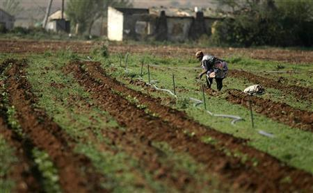 A South African farm worker