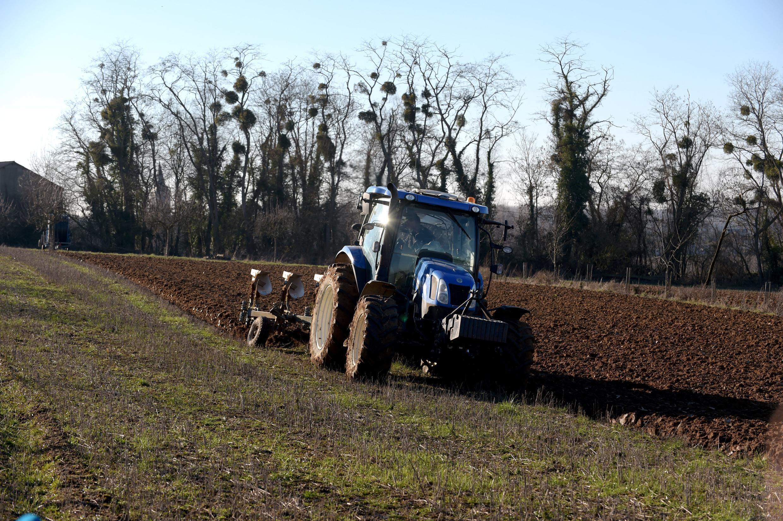 France agroforesterie