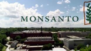 A Monsanto é filial desde o ano passado da gigante química alemã Bayer.
