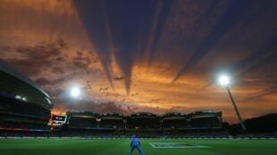 La Coupe du monde de cricket 2015 se déroule à Adelaide en Australie.