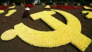 资料照片:武汉街头草花编织的中共党旗标志。