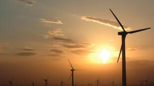L'énergie éolienne en Egypte est très compétitive.Le parc de Ras Ghareb aura une capacité de 260 MW, il doit être achevé en 2019. (Photo d'illustration).