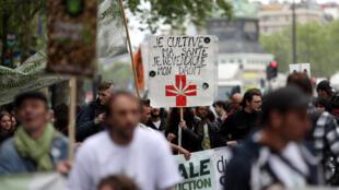 «Je cultive ma santé, je revendique mon droit» proclame un manifestant à Paris, en faveur de la dépénalisation du cannabis, le 14 mai 2016.