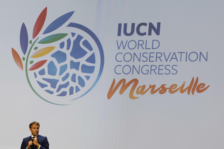 Una transeúnte frente a una maqueta el 3 de septiembre de 2021, día de la inauguración del Congreso de la UICN, en Marsella (Francia)