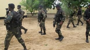 There has been a better cooperation between the Nigerian and Cameroonian forces in their fight against Boko Haram.