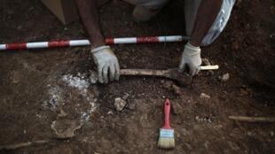 Un técnico exhume un hueso humano en Teba, el 16 de marzo de 2012.