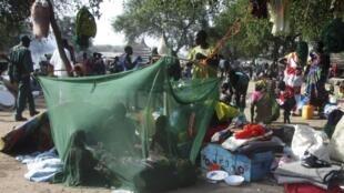 南苏丹博尔地区逃离首都的难民。图片摄于2013年12月30日