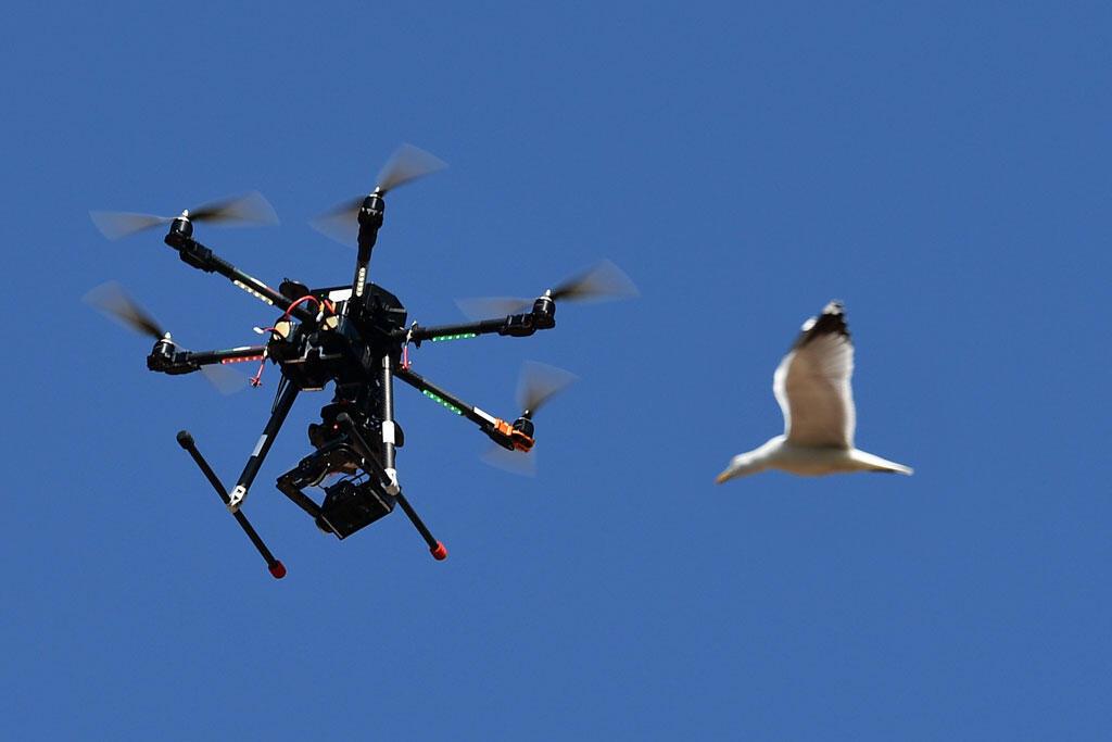 Photo d'un drone dans le ciel (image d'illustration).