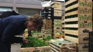 La argentina Carina Rutgerson trabajó durante 3 años en Rungis como directora de una empresa de acondicionamiento de frutas y verduras orgánicas.