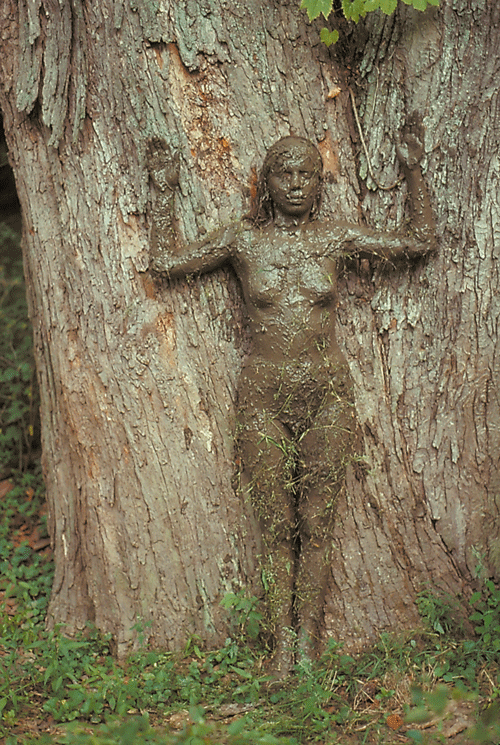 Ana Mendieta, Tree of Life, 1976