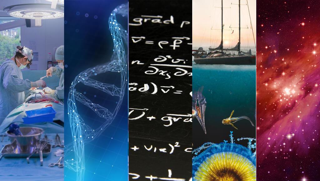 Avanços genéticos, biológicos e de medicina em 2015