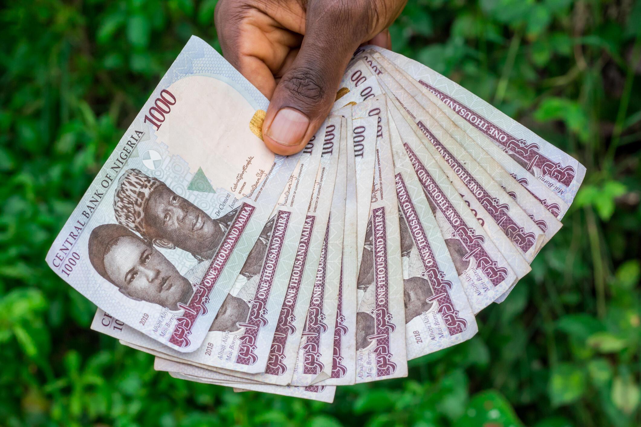 La monnaie nigériane, la naïra.