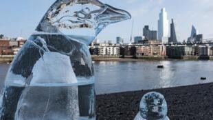 Des sculptures en glace de pingouins sur les bords de la Tamise, dans le cadre  d'une campagne Greenpeace, le 10 février 2020 (image d'illustration).