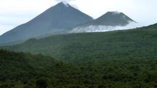 Forêts en République Démocratique du Congo.