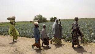 Women and children walk past farms in Jere area, 11 kilometers from Maiduguri in Borno state, northeast Nigeria, on April 6, 2017.
