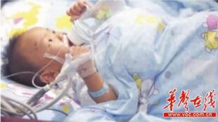 奇迹生存的女婴肖梦茹在重症监护室救治 (中国网页)