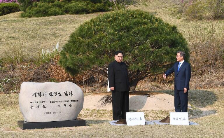 Надпись на мемориальном камне гласит: «Здесь посажены мир и процветание»