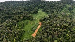 Une vue aérienne du site du projet de forage «Montagne d'or» situé à 180 km à l'ouest de la capitale Cayenneen en Guyane.