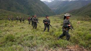 Patrouille de la guerilla dans les montagnes de Colombie