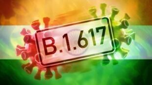 关于印度发现的B.1.617新冠病毒变体报道图片