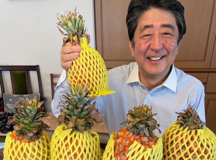 日本前首相安倍晉三推特上傳圖片