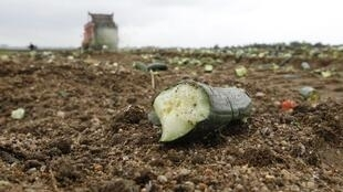 EU farmers want compensation for loss of sales
